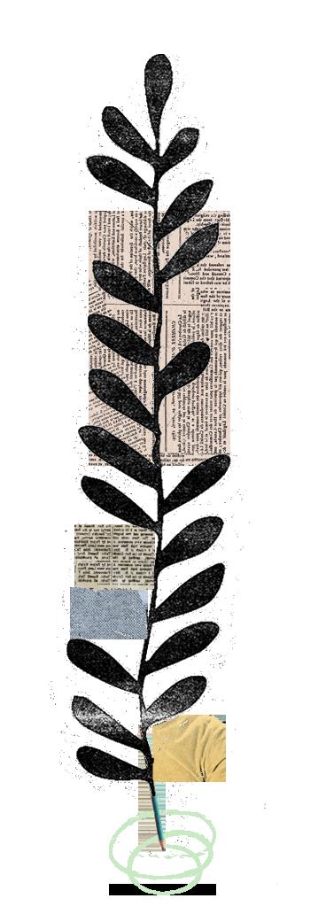 illustración de planta con letras en sus hojas y lapicero como tallo
